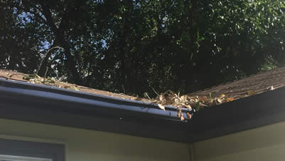 ABT Foundation Solutions reminds you: Clean your gutters.