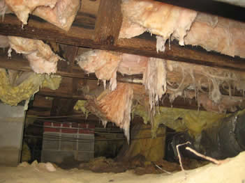 Crawl space with falling insulation